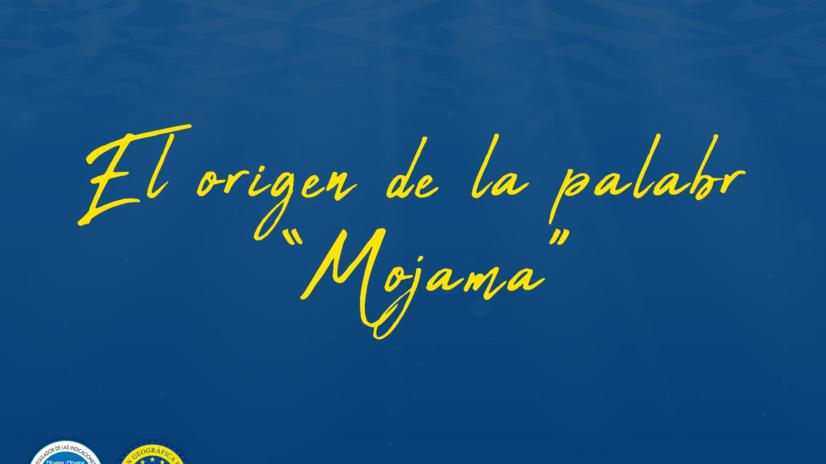 El origen de la palabra 'mojama'